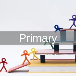 Main Primary 300px