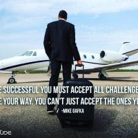To be successful you must accept all challenges that come your way. You can't just accept the ones you like. - Mike Gafka