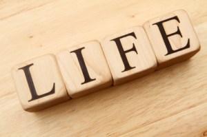 life-007