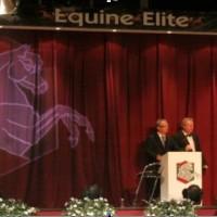 Equine Elite, Holland – Auction