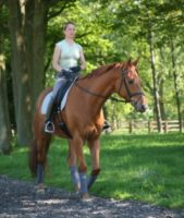 Rubin excels at Hickstead