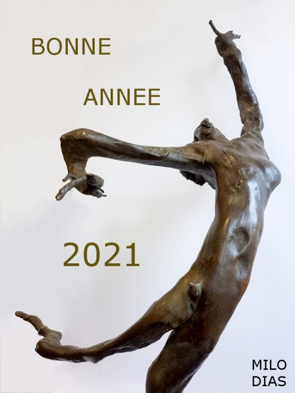Voeux 2021 de Milo Dis