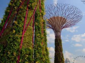 gardens-by-the-bay-supertrees-singapore-7