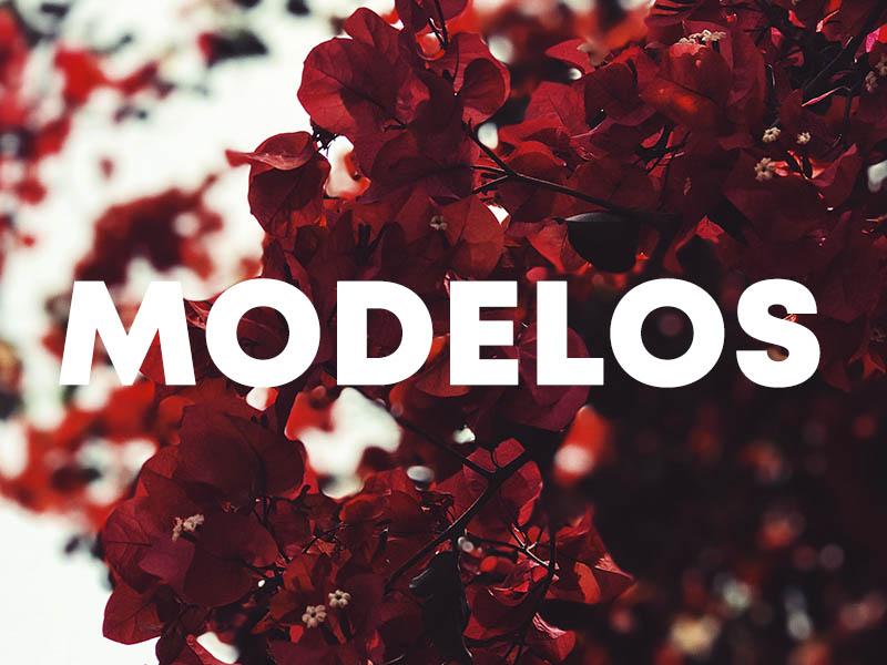mi mejor imagen modelos