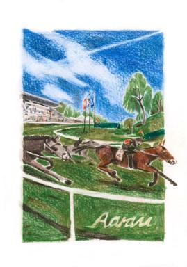 Pferderennen im Schachen