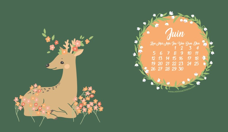 Calendrier de Juin 2017 (Freebies & Printable)