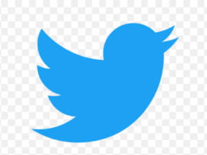 Guideline on How to Tweet a GIF on Twitter