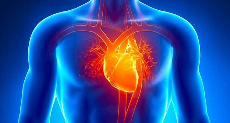 Sakit jantung dan organ dalam