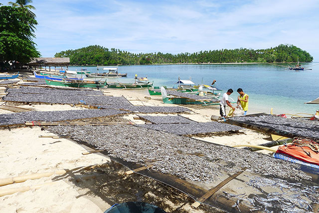 BOUNTY OF THE SEA. Dilis or anchovies are left to dry under the sun in Purok Mangga, Barangay Paril in Kalamansig, Sultan Kudarat. Balut Island beckons at the background. MindaNews photo by Bong S. Sarmiento