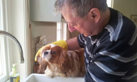 Ready for a bath!