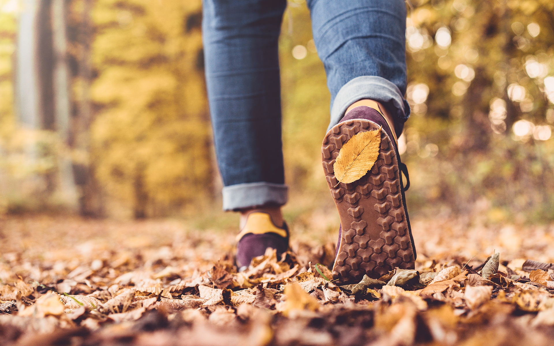 How Walking In the Woods Helped Ease My Anxiety -Autumn concept, close up of shoe sole with yellow leaf on it
