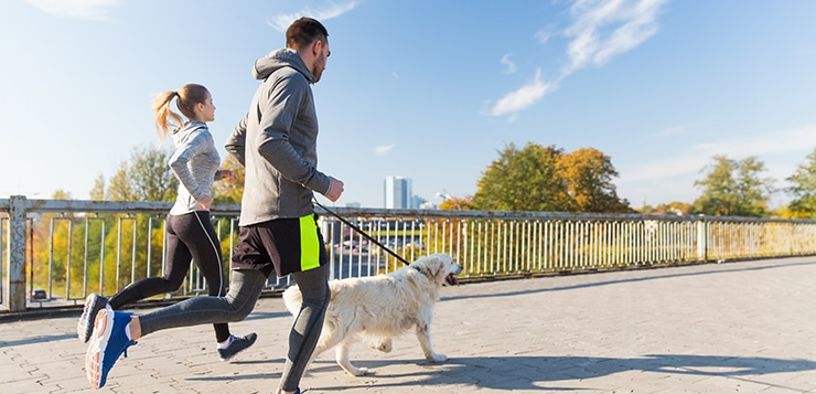 Runners with dog