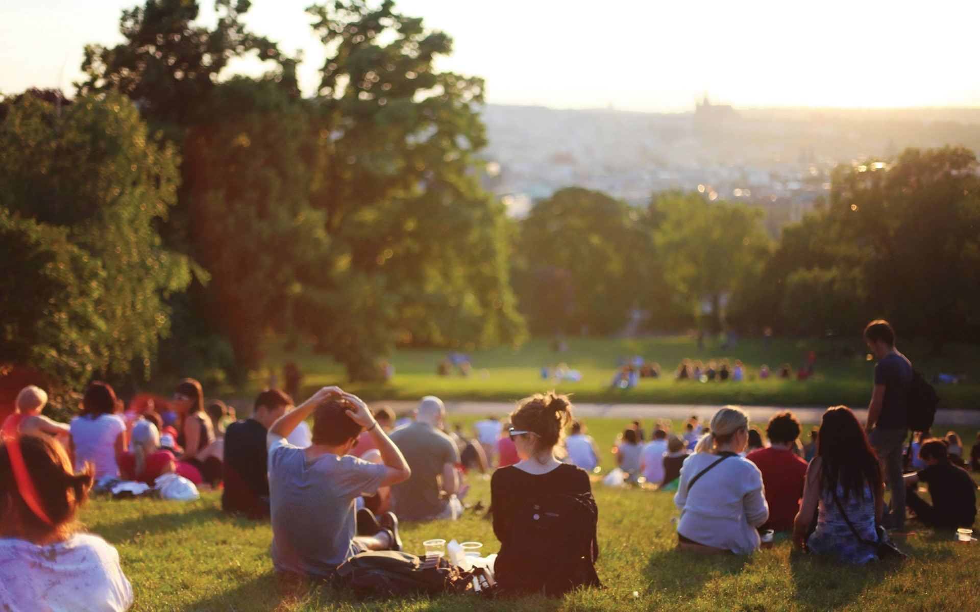 People sitting on grass