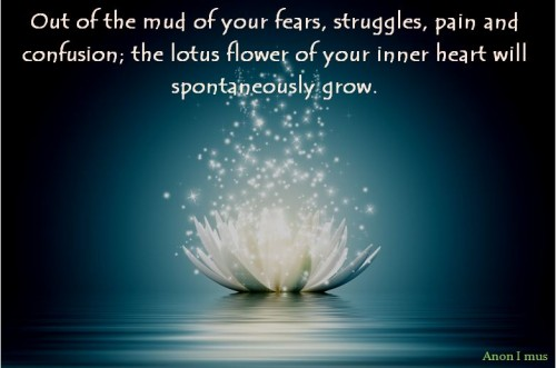 Mindful InspirationsThe Lotus Flower - Out of the Mud & Muck ...