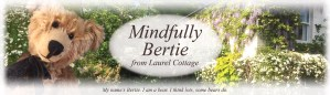 Mindfully Bertie Header Image
