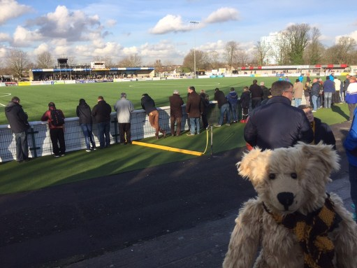Sutton United: 849 Supporters here.