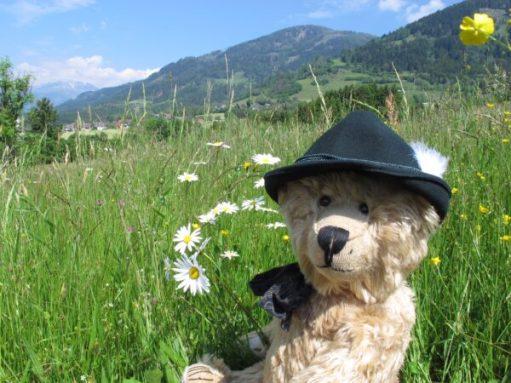 Austria: For bears.