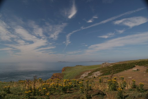 GAD - Generalised Anxiety Disorder - Out of the Darkness: Skomer Island.