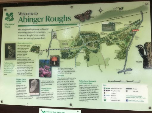 The Bench: NT Interpretation Board Abinger Roughs.