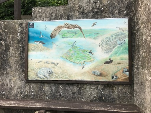 Giselle Eagle: Skomer welcome mural
