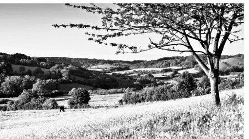 Cotswold Granny: One of the five valleys near Stroud.