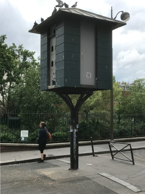 Paris: Where Parisians celebrate and build homes for pigeons who repay them as only they know how!