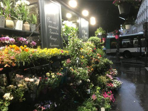 Paris: Flower Shop