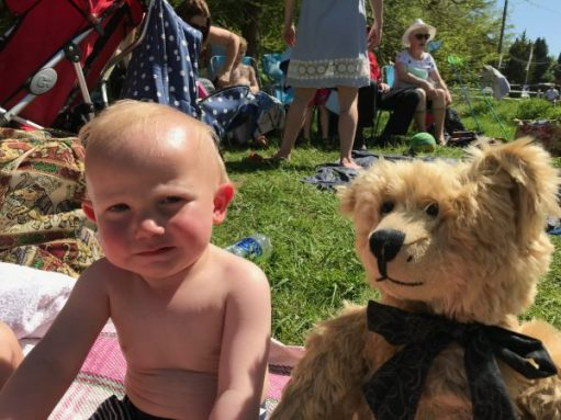 Teddy Bers' Picnic: Here's Cody. Friend to the grandchildren.