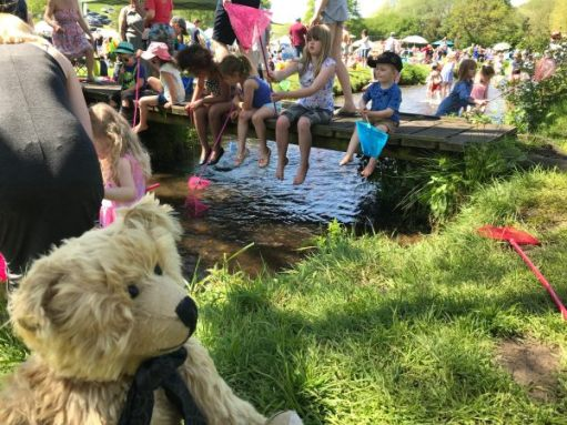 """Teddy Bears' Picnic: """"Wouldn't fancy being a stickleback today!"""""""