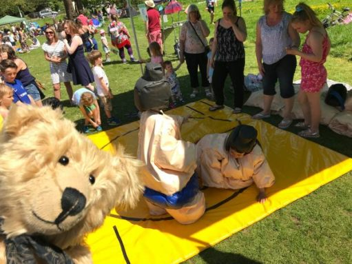 "Teddy Bears' Picnic: ""At least the view is better than real sumo wrestlers."""