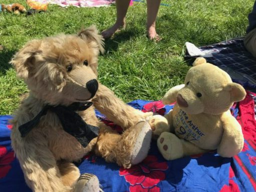 "Teddy Bears' Picnic: ""You're sweet. But is that your name, or your owners?"""