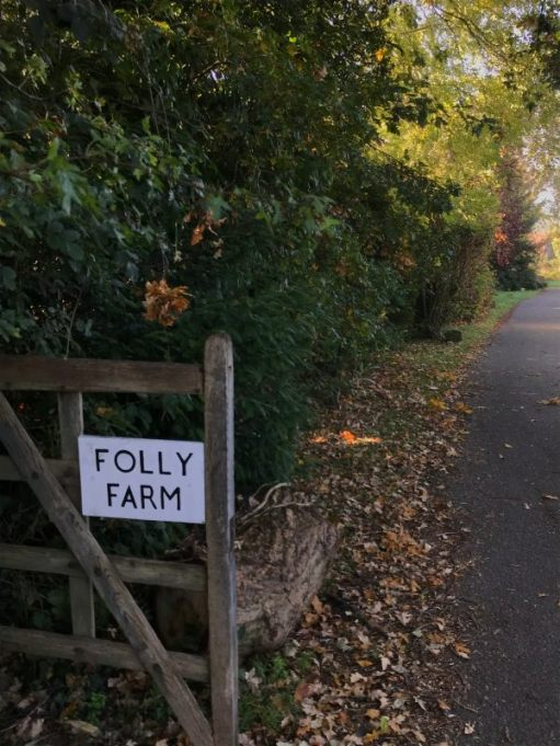 Over the Hills and Far Away: Folly Lane leading to Folly Farm.