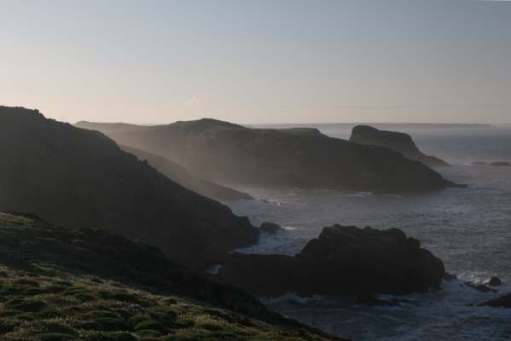 Contre-jour: Skomer Island early morning (published in the book of the Island).