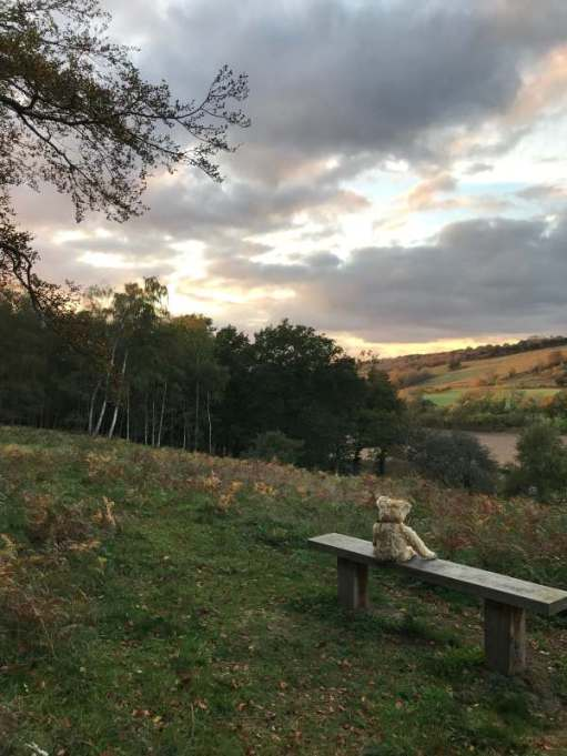 Tick tock. Watch the sun go down in your favourite place. Diddley's View, Abinger Roughs.