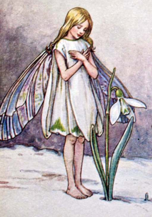 Cotswold Reverie: The Snowdrop Fairy.