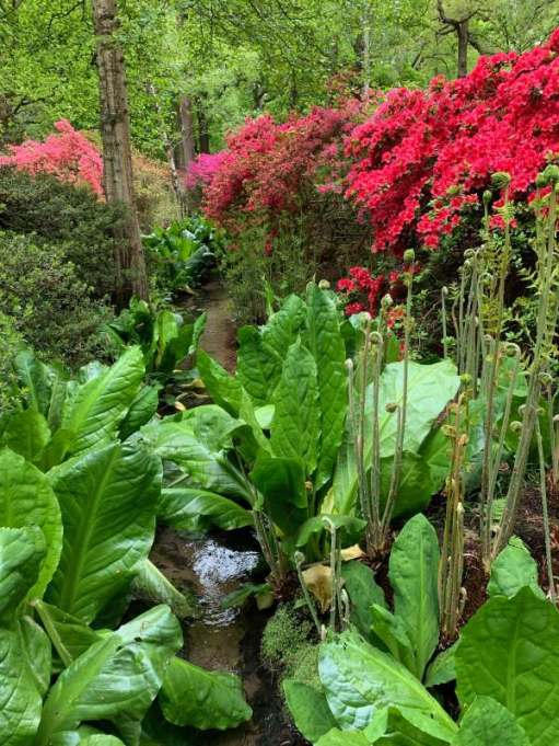 Stream in the gardens.