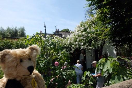 Bertie, with people looking around a garden behind.