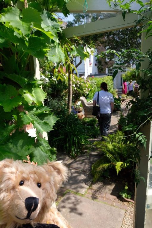 Bertie in a garden of exotic plants.