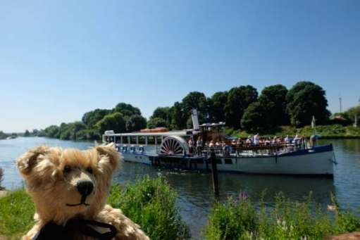 Bertie in fron of the Yarmouth Belle, which is cruising on the Thames.