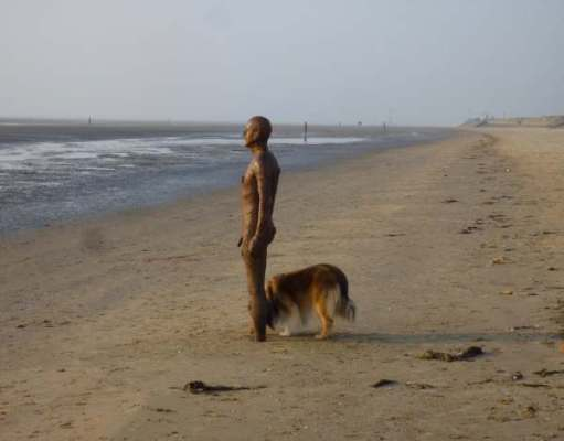 A Gormley statue on Crosby Beach with a large dog sniffing between its feet.