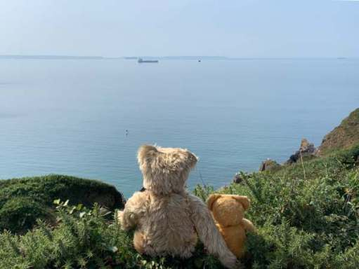 Bertie and Eamonn looking over the sea to Skomer Island.