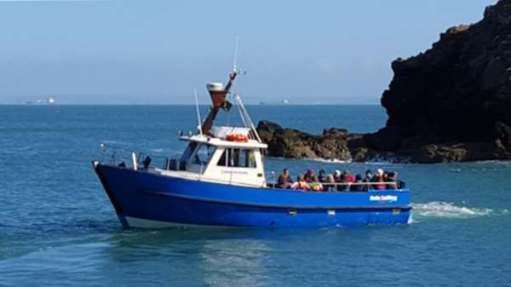 Dale Princess heading to Skokholm Island.