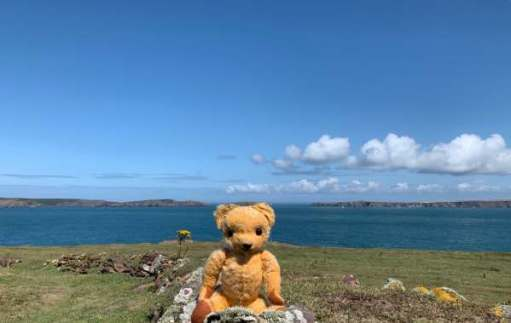 The mainland to the right (the Deer park of the Marloes peninsular). Jack Sound behind my left ear and Skomer to the left.