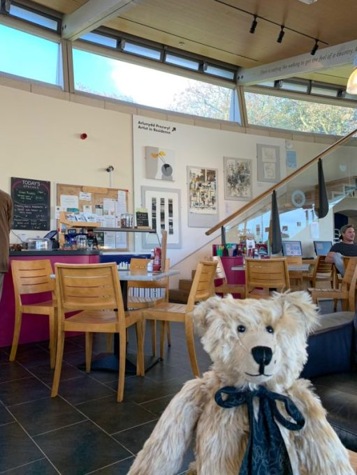 Inside Oriel y Parc. Very nice café. Bertie is sat front right facing the camera.