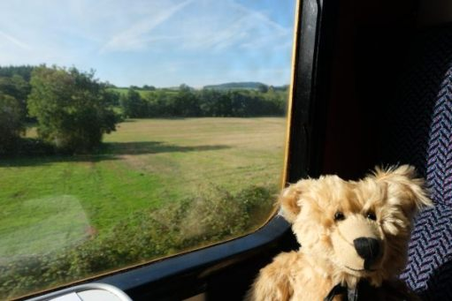 West Somerset Railway - Bertie sat in a coach at a window seat.