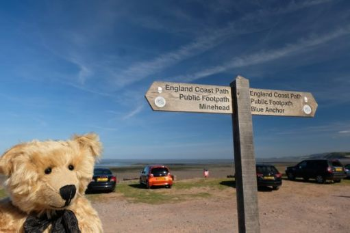 Bertie standing by a sign pointing towards Minehead to the left and Blue Anchor to the right.
