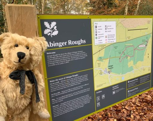 Bertie by the Abinger Roughs information board.
