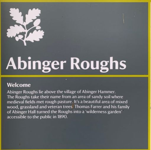 Information about Abinger Roughs: Abinger Roughs lie above the village of Abinger Hammer. The Roughs take their name from an area of soil where medieval fields met rough pasture. It's a beatiful area of mixed wood, grassland and veteran trees. Thomas Farrer and his family of Abinger Hall turned the Roughs into a 'wilderness garden' accessible to the public in 1890.