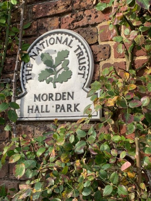 Wall plaque for the National Trust Morden Hall Park, on an ivy-covered wall.