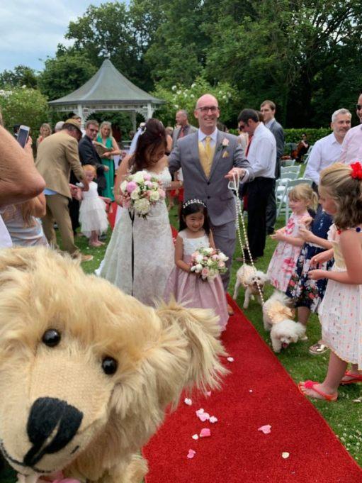 Wedding couple walking down the red carpet. Bertie's head is in the bottom left-hand corner.